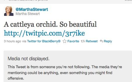 Martha Stewart Twitter