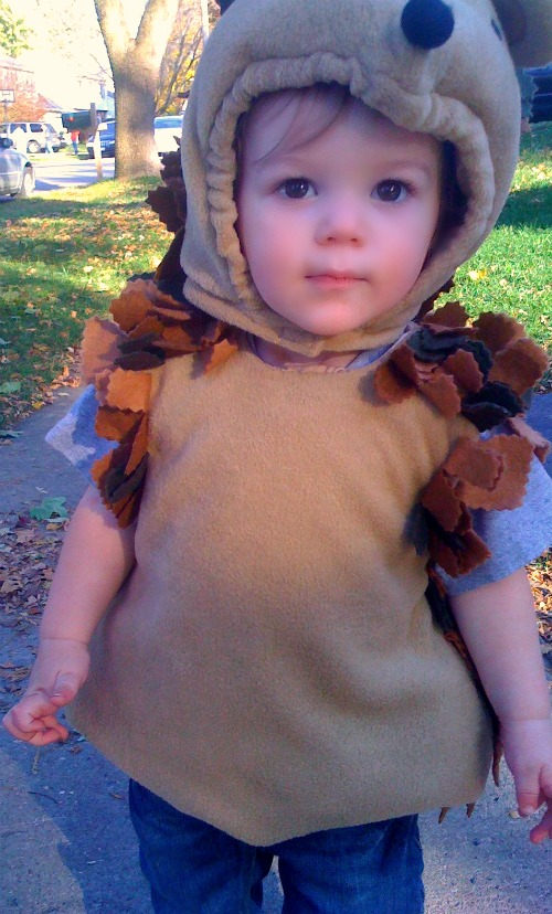 hedgehog-toddler-costume