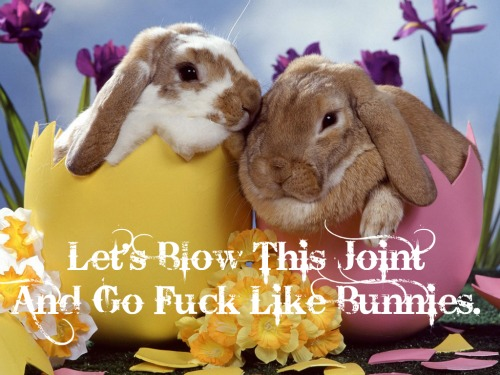 bunny-in-eggs