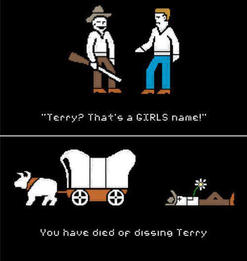 don't dis terry